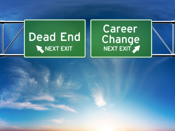 Should I Take My Career Aspirations Online?
