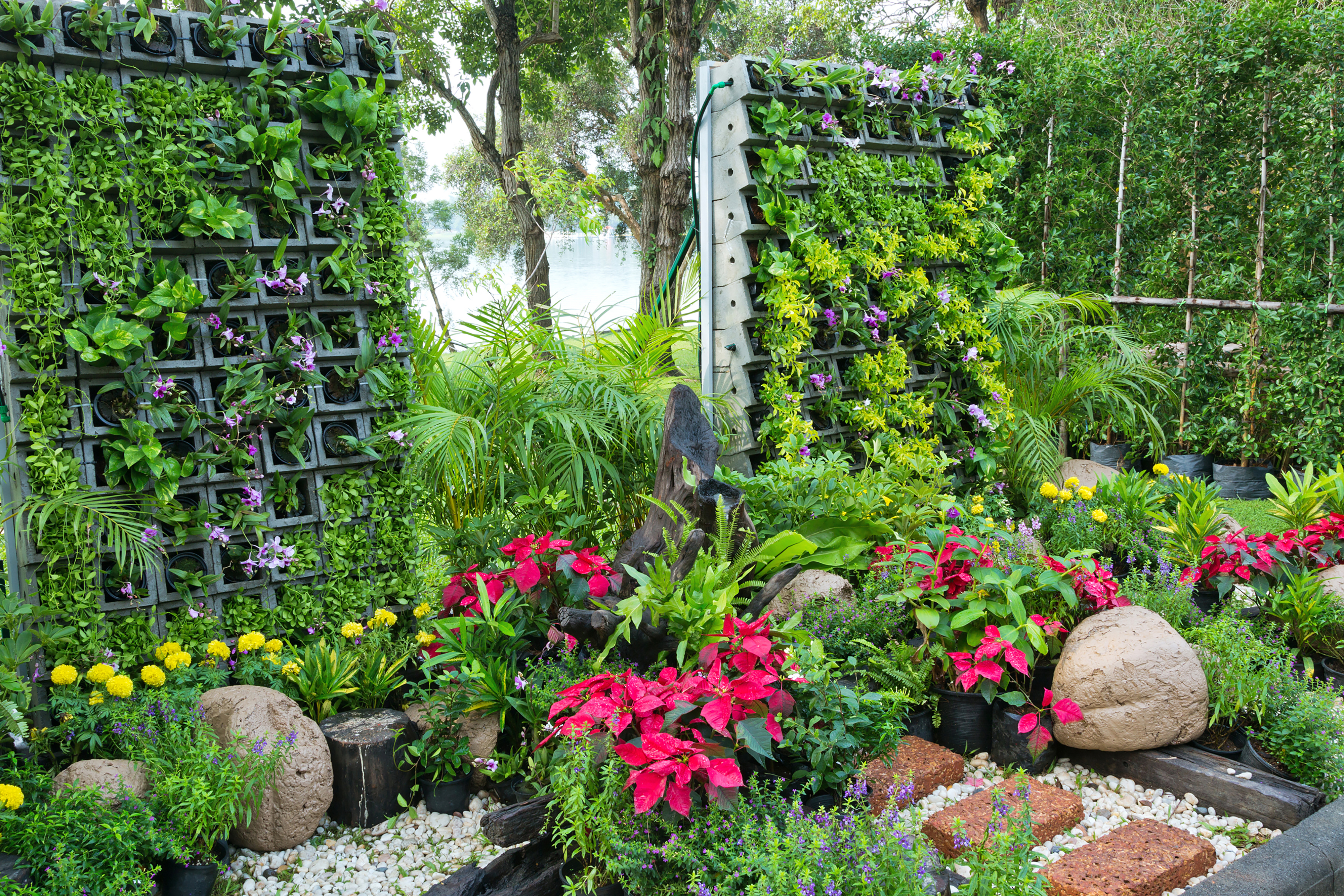 8 Amazing Benefits of Planting a Vertical Garden